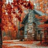 Seasons - Fall cabin1